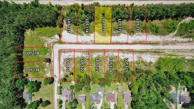 Lot 173 Indigo Way, Porter, TX 77365 (MLS #80137032) :: Michele Harmon Team