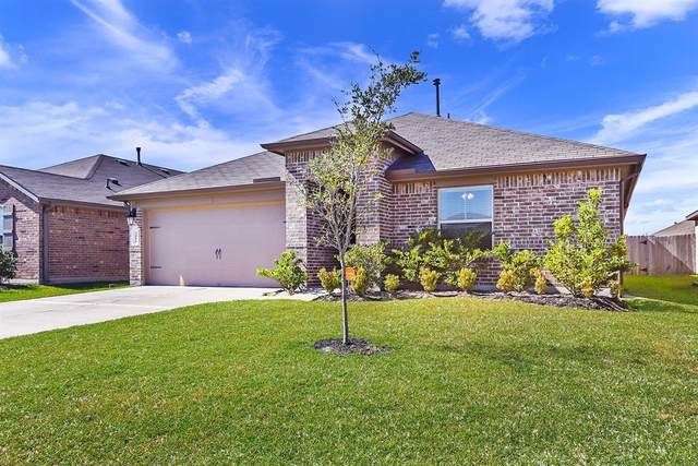3010 Dripping Springs Court, Katy, TX 77494 (MLS #80141509) :: NewHomePrograms.com LLC