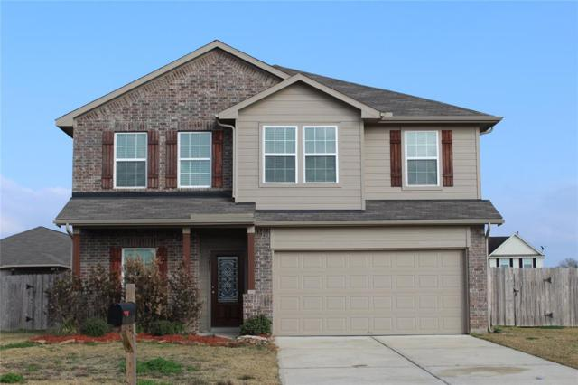 2211 Grand Isle Lane, Rosenberg, TX 77471 (MLS #80204371) :: Team Sansone