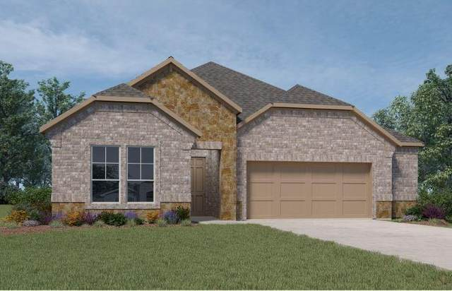 6318 Scarlet Mallow Lane, Conroe, TX 77304 (MLS #80227243) :: The Heyl Group at Keller Williams
