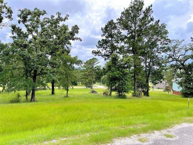 56 Hillsborough Drive, Huntsville, TX 77340 (MLS #80286157) :: My BCS Home Real Estate Group