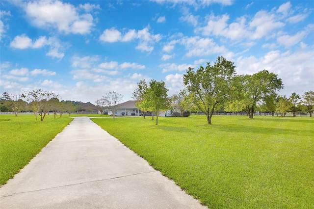 643 High Meadow Ranch Drive, Magnolia, TX 77355 (MLS #80339778) :: The Bly Team