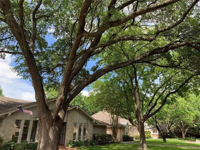 10810 Holly Springs Drive, Houston, TX 77042 (MLS #80397444) :: The Heyl Group at Keller Williams