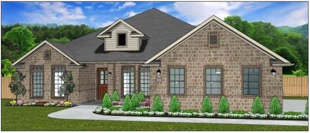 1603 Silver Creek Lane, Montgomery, TX 77316 (#80428599) :: ORO Realty