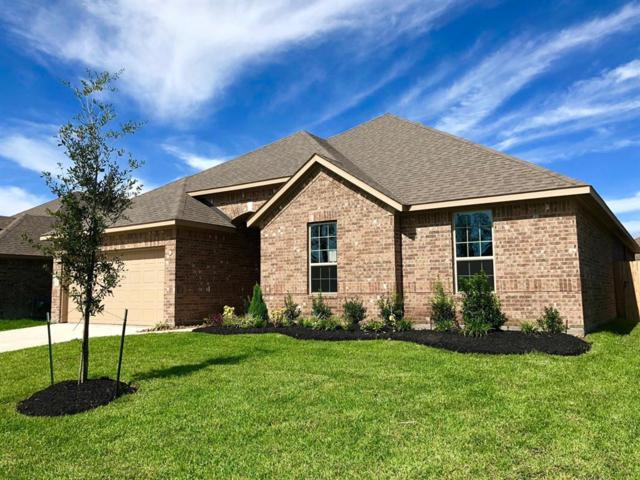8327 Erasmus Landing Court, Houston, TX 77044 (MLS #80471903) :: The Johnson Team