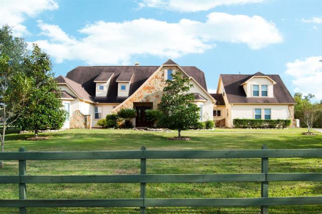 4526 Box Turtle Lane, Fulshear, TX 77441 (MLS #80502196) :: Texas Home Shop Realty