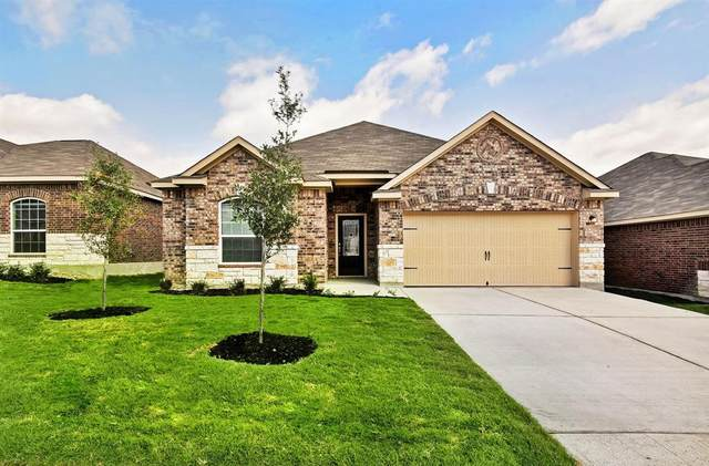 21223 Echo Manor Drive, Hockley, TX 77447 (MLS #80507879) :: The Parodi Team at Realty Associates