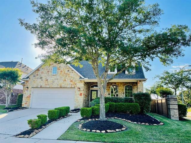 10027 White Pines Dr Drive, Katy, TX 77494 (#8052218) :: ORO Realty