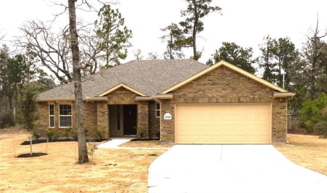 25110 Calvary Charge, Magnolia, TX 77355 (MLS #80569055) :: Christy Buck Team