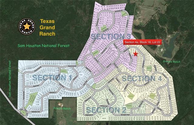 4a-16-22 Branding Iron Road, Huntsville, TX 77340 (MLS #80590613) :: Green Residential