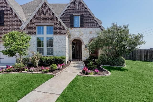 6711 Marbrook Saddle Court, Sugar Land, TX 77479 (MLS #80691900) :: Lerner Realty Solutions