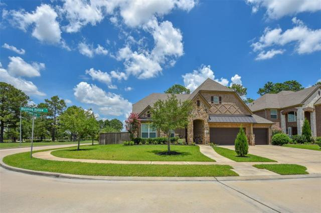 3607 Blushing Hollow Drive Drive, Katy, TX 77494 (MLS #80732981) :: Caskey Realty