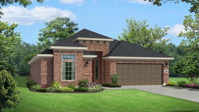 111 Mistflower Path, Montgomery, TX 77316 (MLS #80808868) :: The Home Branch