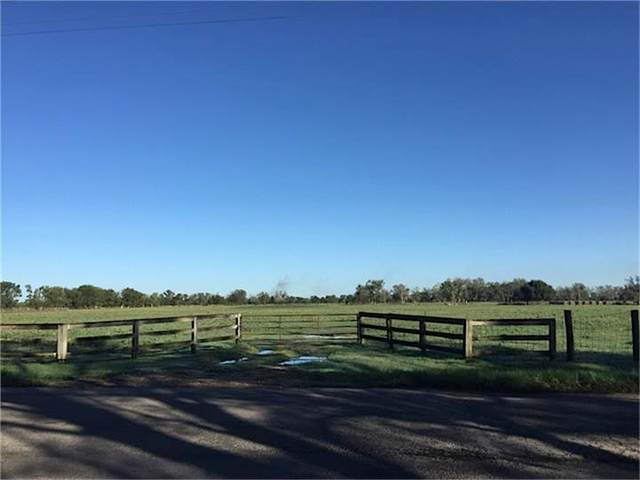 36604 County Line Road, Brookshire, TX 77423 (MLS #80851902) :: Caskey Realty
