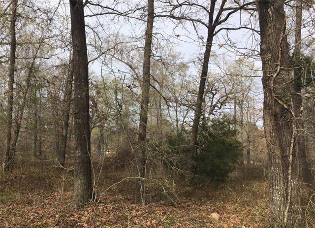 TBD Deep Woods Lane, Livingston, TX 77351 (MLS #80866999) :: Green Residential