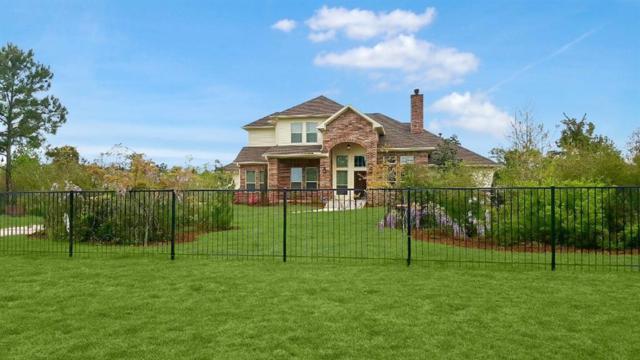 26228 Laurens Court, Montgomery, TX 77316 (MLS #80905728) :: Fairwater Westmont Real Estate