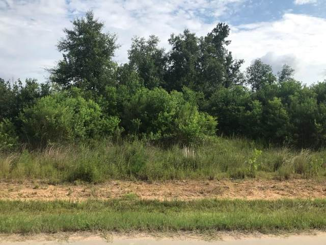 737 Road 5007, Cleveland, TX 77327 (MLS #80911811) :: The Bly Team