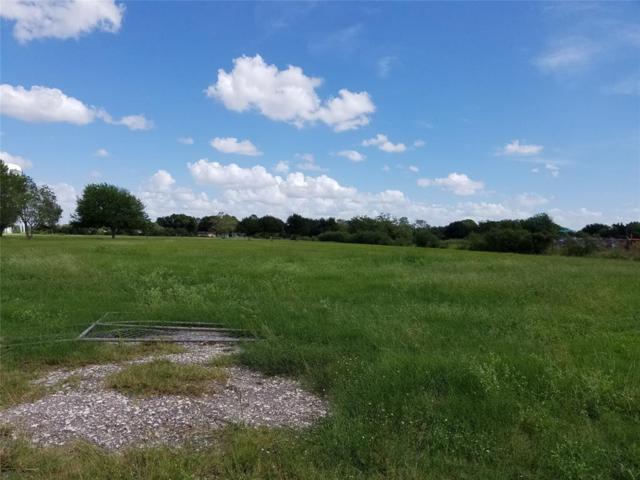 901 Blume Road, Rosenberg, TX 77471 (MLS #80935739) :: The SOLD by George Team