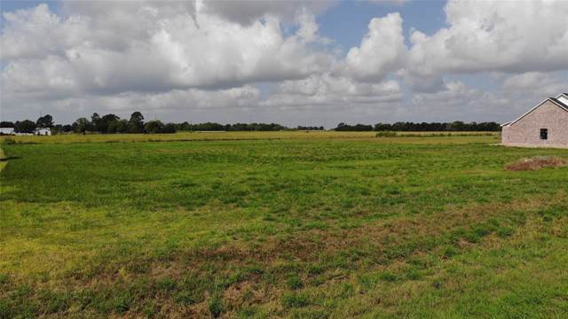 Lot 09 Crescent Cross Drive, Needville, TX 77461 (MLS #80968155) :: The Heyl Group at Keller Williams