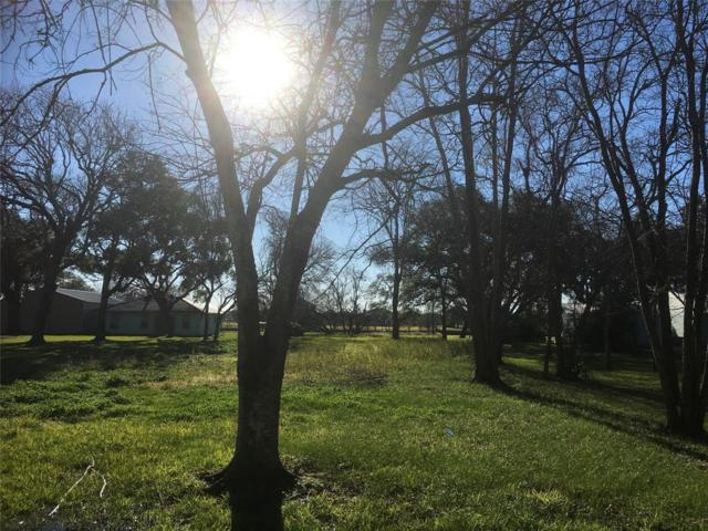 103 County Road 297 Oak Circle, Sargent, TX 77414 (MLS #80969141) :: The SOLD by George Team
