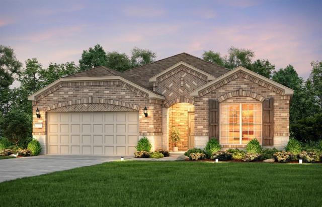 539 Emory Peak Drive, Richmond, TX 77469 (MLS #81039197) :: JL Realty Team at Coldwell Banker, United