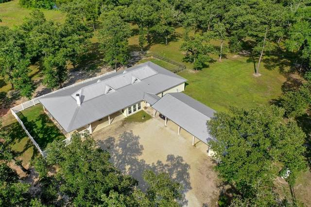 1164 Fm 247 Road, Huntsville, TX 77320 (MLS #81056453) :: Bray Real Estate Group