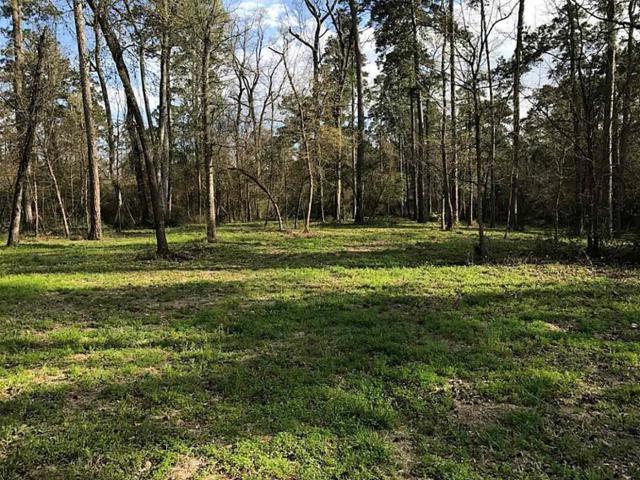 1251 Trailwood Estates Drive, Magnolia, TX 77354 (MLS #81084895) :: Magnolia Realty