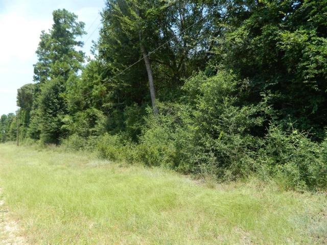1719-6 Carolyn Court, Plantersville, TX 77363 (MLS #8112235) :: Giorgi Real Estate Group