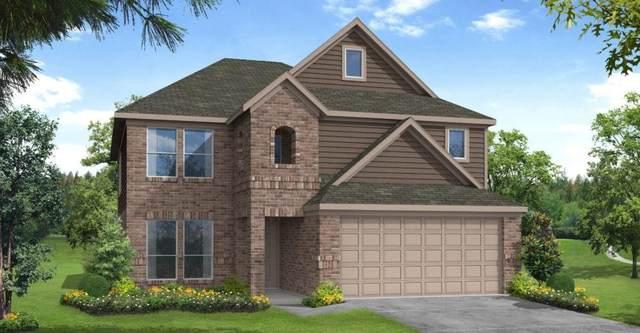 2643 Ridgeback Drive, Rosenberg, TX 77471 (MLS #81160798) :: The Queen Team