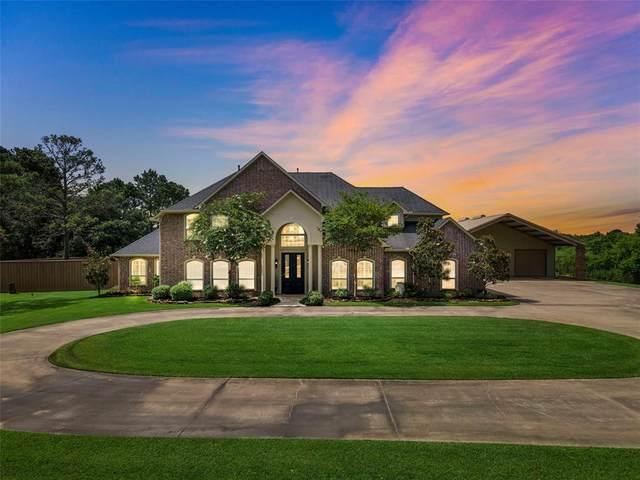 9931 Old Needlepoint Road, Baytown, TX 77521 (MLS #81162285) :: Ellison Real Estate Team