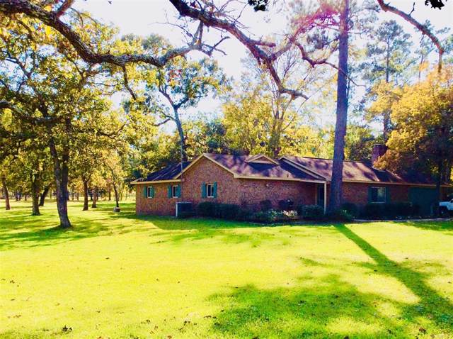 25389 Lady Ellen Drive, Hockley, TX 77447 (MLS #81213461) :: The Home Branch