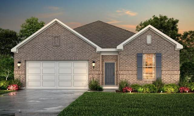 25320 Broad Turtle Lane, Porter, TX 77365 (MLS #81261454) :: Texas Home Shop Realty