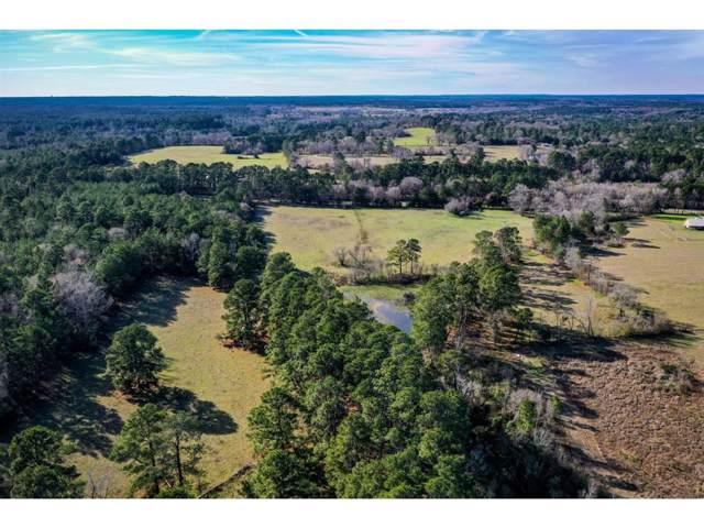 23.87 Ac Fm 405, Huntsville, TX 77320 (MLS #81277746) :: Ellison Real Estate Team