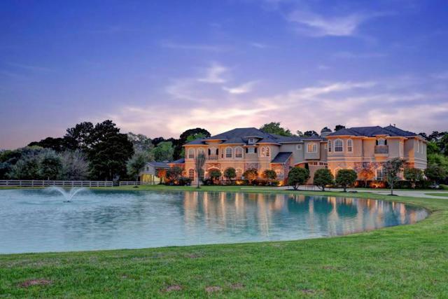 24702 Mesquite River Trl, Hockley, TX 77447 (MLS #81282650) :: Texas Home Shop Realty