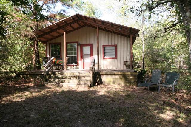 299 Cr 312, Broaddus, TX 75929 (MLS #8132358) :: My BCS Home Real Estate Group
