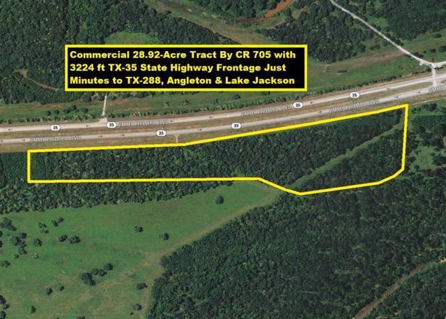 0 W Highway 35, Angleton, TX 77515 (MLS #81327317) :: Christy Buck Team