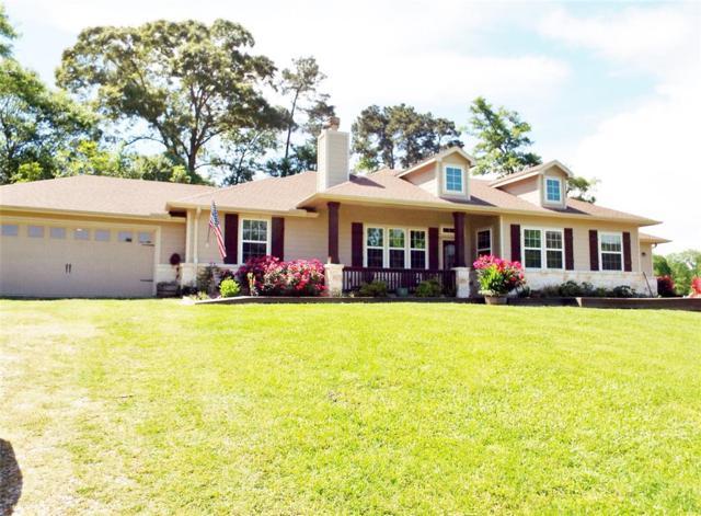 111 Mill Creek Road, Point Blank, TX 77364 (MLS #81330801) :: Caskey Realty