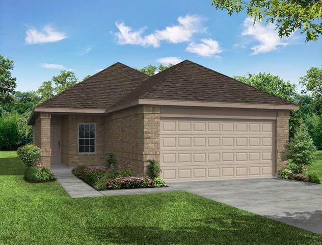 4443 Stephanie Park Lane, Conroe, TX 77304 (MLS #81380213) :: Texas Home Shop Realty