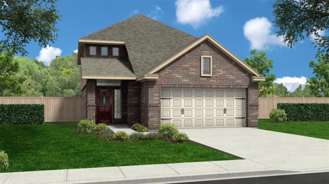 9602 Yellow Rose Drive, Texas City, TX 77591 (MLS #81381622) :: Texas Home Shop Realty