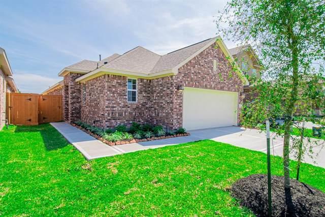 13021 Dancing Reed Drive, Texas City, TX 77568 (MLS #81388264) :: The Queen Team