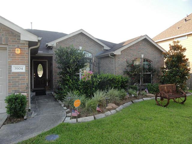 3904 Winding Forest, Pearland, TX 77581 (MLS #81393029) :: NewHomePrograms.com LLC