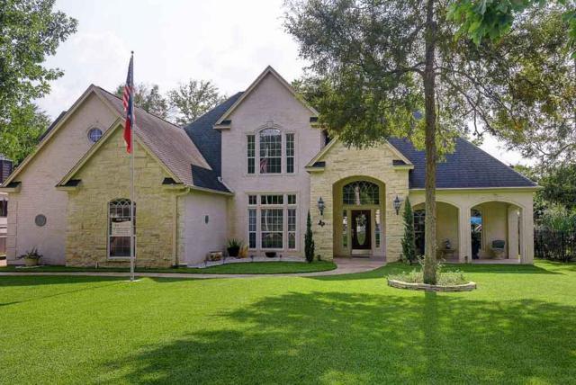 12384 Aries Loop, Willis, TX 77318 (MLS #81419317) :: The Home Branch