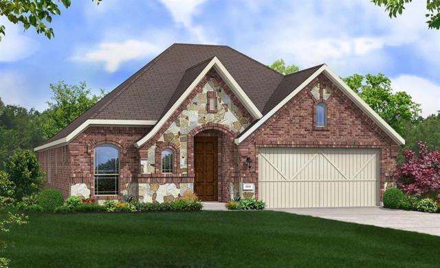 24431 Piney Harbor Lane, Katy, TX 77493 (MLS #81454335) :: Texas Home Shop Realty