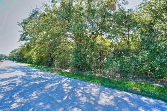0 Saddlehorn Trail, Katy, TX 77494 (MLS #81470561) :: Caskey Realty