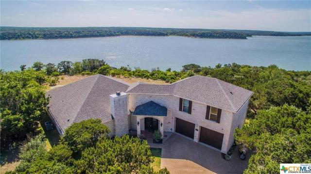 16089 Salado Drive, Temple, TX 76502 (MLS #81513501) :: The Heyl Group at Keller Williams