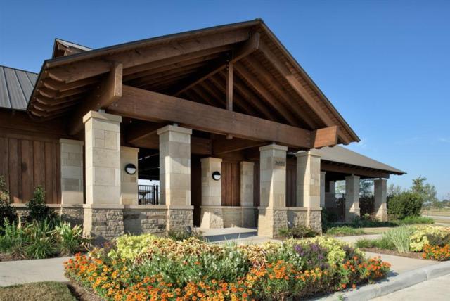 2250 Brookdale Bend, Katy, TX 77494 (MLS #81561598) :: Team Sansone