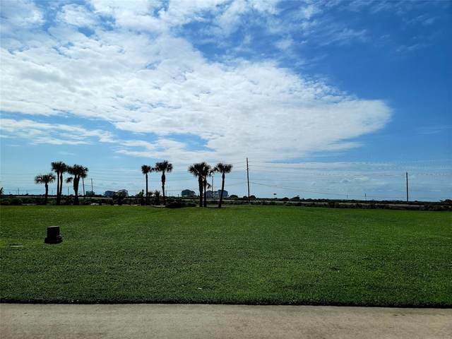 25618 Spotted Sandpiper Drive, Galveston, TX 77554 (MLS #81631007) :: The Bly Team