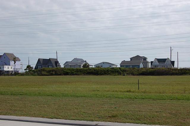 21305 Scissor Tail Lane, Galveston, TX 77554 (MLS #81661982) :: Texas Home Shop Realty