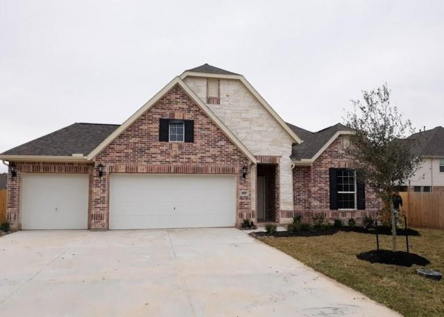 1731 Lake Raven Drive, Dickinson, TX 77539 (MLS #81674793) :: Rachel Lee Realtor