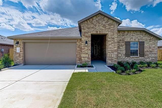 9619 Japonica Street, Rosenberg, TX 77469 (MLS #81679917) :: The Sansone Group